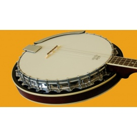 HS1 Tenor Banjo with Bag