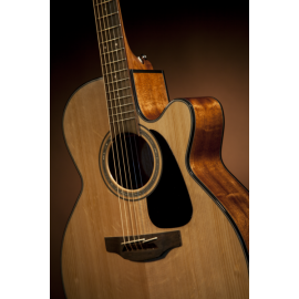 GN30CE Semi-Acoustic Guitar