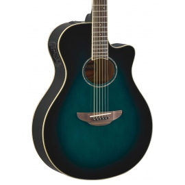 APX600 Acoustic Guitar