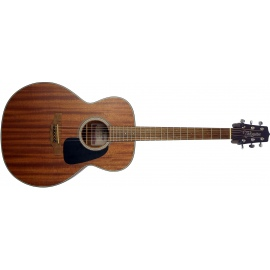 GN11NS Acoustic Guitar