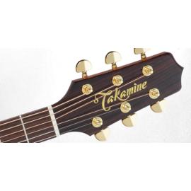 P5NC NEX Semi Acoustic Guitar