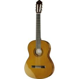 CG142C Solid Cedar Top Classical Guitar