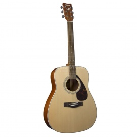 F370 Folk Guitar Pack