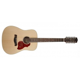 D2012 Master Series Handmade 12 String Guitar