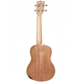 Tanglewood TWT4