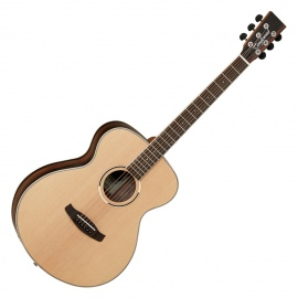 DISCOVERY SERIES DBTFEB EBONY B/S ACOUSTIC GUITAR
