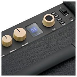 Rumble LT25 Bass Amplifier