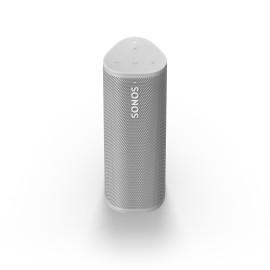 Roam Wifi & Bluetooth Speaker