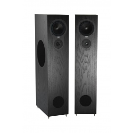 RX5 Floorstanding Speakers