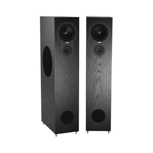 RX5 Floorstanding Speakers