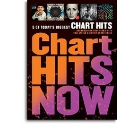 Chart Hits Now Volume 1