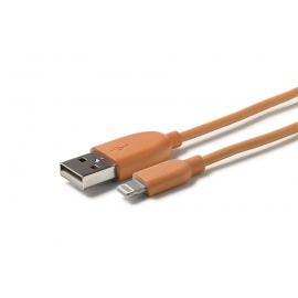 USB 2.0 Plug to Lightning Plug - Orange