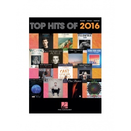 Top Hits Of 2016: PVG