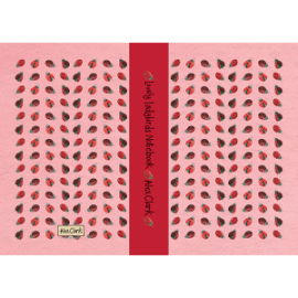Lovely Ladies Small A5 Hardback Notebook