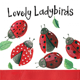 Lovely Ladies Mini Magnetic Notepad