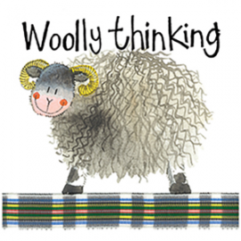 Woolly Thinking Mini Magnetic Notepad