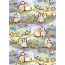 Owls Large Chunky Notebook