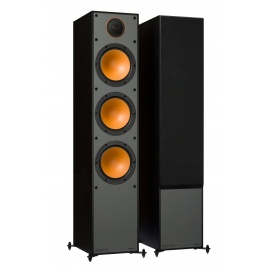 Monitor 300 Foorstanding Speakers